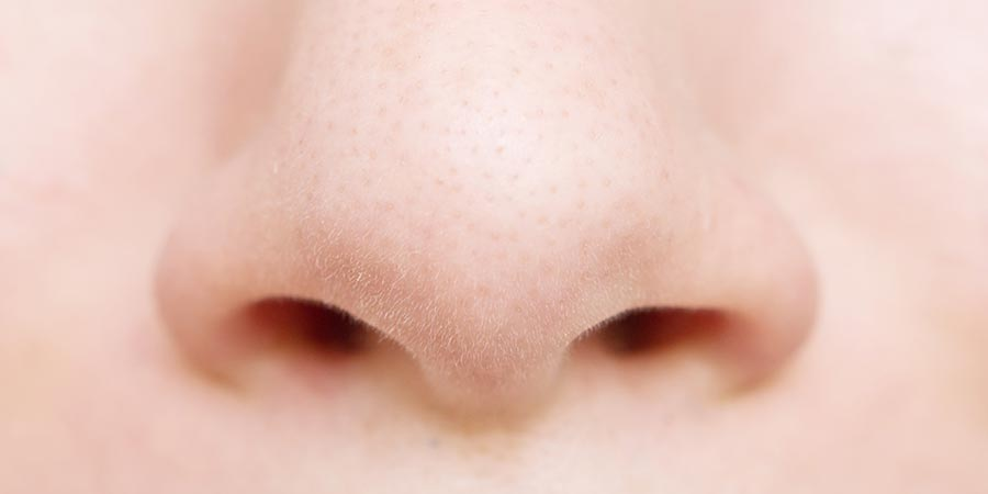 Nase vorn – HNO über Geschmackssinn